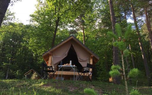Extérieur de la hutte en bois au milieu des arbres